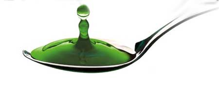 жидкий хлорофилл нсп